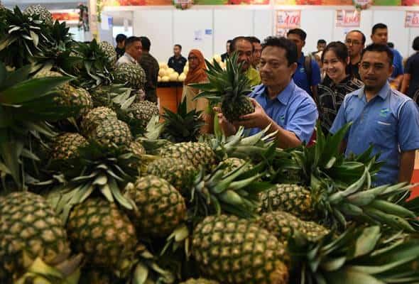 FAMA sasar kurangkan jurang import sayuran dan buah-buahan