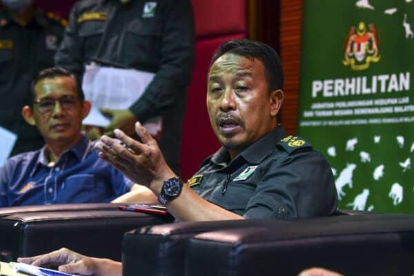 Pemburu haram: Cadangan hukuman denda RM1 juta, penjara 15 tahun