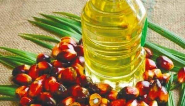 Iran rancang tingkatkan import minyak sawit dari Malaysia